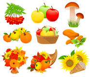 Autumn food set Royalty Free Stock Photo