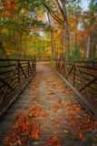 Autumn Foot Bridge Fotografia Stock Libera da Diritti