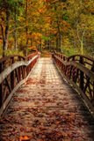 Autumn Foot Bridge Fotografie Stock Libere da Diritti