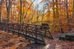 Autumn Footbridge foto de stock royalty free