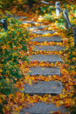 Autumn Foothpath. Japanese faved stone autumn foothpath Stock Image
