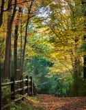 Autumn Footpath fotografía de archivo