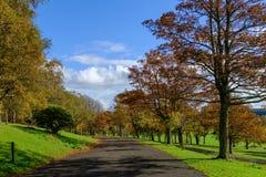 Autumn Footpath Through Bellahouston Park en Glasgow imágenes de archivo libres de regalías