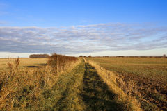 Autumn footpath. A grassy country footpath with arable fields and hawthorn hedgerows in a yorkshire wolds landscape under a blue sky with colorful cloud patterns Stock Photo