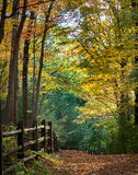 Autumn footpath Stock Photography