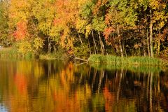 Autumn forest. Reflected on the water Stock Photo