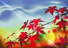 Autumn forest. In the morning after the rain royalty free illustration