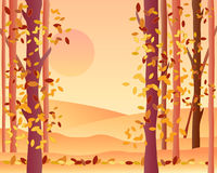 Autumn forest. An illustration of the edge of an autumn forest with orange fields leaves falling and a warm sunset Royalty Free Stock Photos