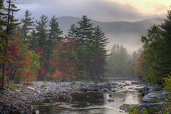 Autumn in the forest. Autumn on Swift river in the white mountains of New Hampshire at dawn in the early autumn Stock Photos