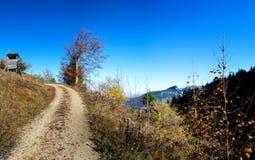 Autumn forest in Allgäu. Autumn forest in Allgäu, Bavaria, Germany Royalty Free Stock Photo