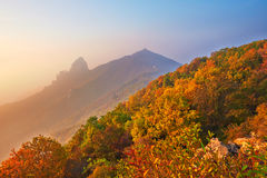 The autumn forest of ancestral mountain Royalty Free Stock Photos