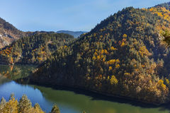 Autumn forest around Teshel  Reservoir, Bulgaria Royalty Free Stock Image