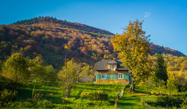 Autumn forest and blue sky and house. Autumn forest and clear blue sky and house Stock Images