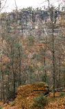 Autumn forest at Bohemian Switzerland Stock Photos