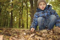In the autumn forest boy found boletus edulis Stock Photography