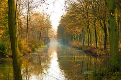 Autumn forest canal reflection. Canal in a autumn colored forest with trees reflecting on the water Stock Photos