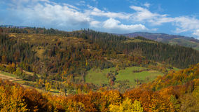 Autumn forest in the Carpathians mountains. Royalty Free Stock Image