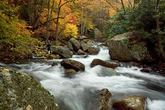 Autumn Forest Cascade Royalty Free Stock Photography