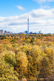 Autumn forest and city with tv tower on horizon Stock Image