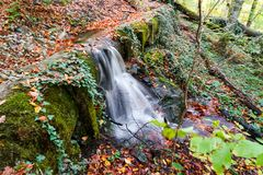 Autumn, forest, colorful leaves and waterfall, stream, lake views royalty free stock photos
