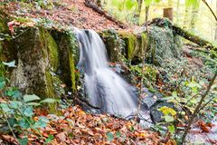 Autumn, forest, colorful leaves and waterfall, stream, lake views. The third season of the year, when crops and fruits are gathered and leaves fall, in the royalty free stock images
