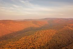 Autumn forest colorful trees and leafs aerial view. Forest Aerial stock photography