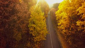 Autumn forest drone aerial shot, Overhead view of foliage trees stock images