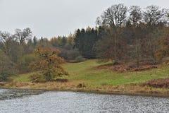 Autumn Forest e rio atrasados Glyme no parque de Cotswolds perto do palácio de Blenheim fotos de stock royalty free