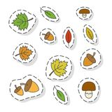 Autumn Forest Elements Flat Vector Stickers Set Stock Photos