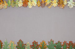 Autumn forest frame Royalty Free Stock Photos