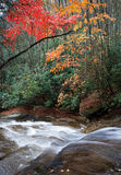 Autumn forest with gentle waterfall Stock Photos