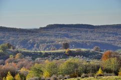 Autumn Forest Hills Royaltyfri Fotografi