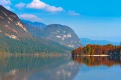 Autumn Forest, Lake And Mountains. Bohinj Stock Photos