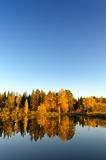 Autumn forest and lake in the fall season Stock Photography