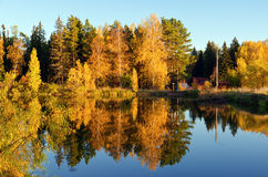 Autumn forest and lake in the fall season Stock Photo