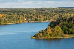 Autumn forest on the lake Stock Photos