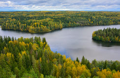 Autumn forest and lake. Lake and forest landscape in autumn Royalty Free Stock Photos