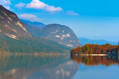 Autumn forest, lake and mountains. Bohinj Stock Photos