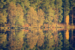 Autumn forest and lake stock photos