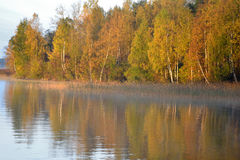 Autumn forest on the lake at sunrise. Royalty Free Stock Photography