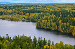 Autumn forest and lake view III. Lake and trees in autumn Stock Image