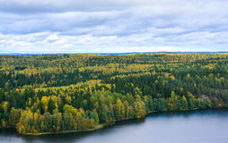 Autumn forest and lake view. Lake and trees in autumn Stock Photo