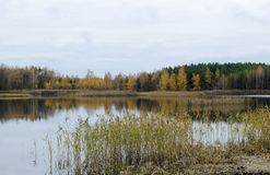 Autumn. Forest lake in autumn, Voskresensky district, Russia royalty free stock images