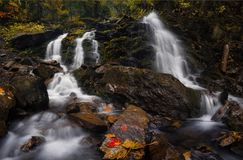 Autumn Forest Landscape With Beautiful Falling-Cascades van Kreek en en Gekleurde Bladeren op de Stenen Koude Bergstroom onder royalty-vrije stock fotografie
