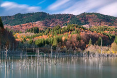 Autumn forest landscape with mountains, blue sky and lake death Royalty Free Stock Photos