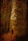 Autumn forest with man Royalty Free Stock Image