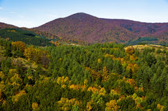 Autumn forest and meadows colors at hills of Zeljin mountain Stock Images