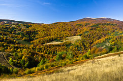 Autumn forest and meadows colors at hills of Zeljin mountain Royalty Free Stock Images