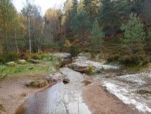 Autumn Forest med floden och stenen arkivbild
