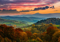 Autumn forest on a  mountain hill at sunset Stock Photography